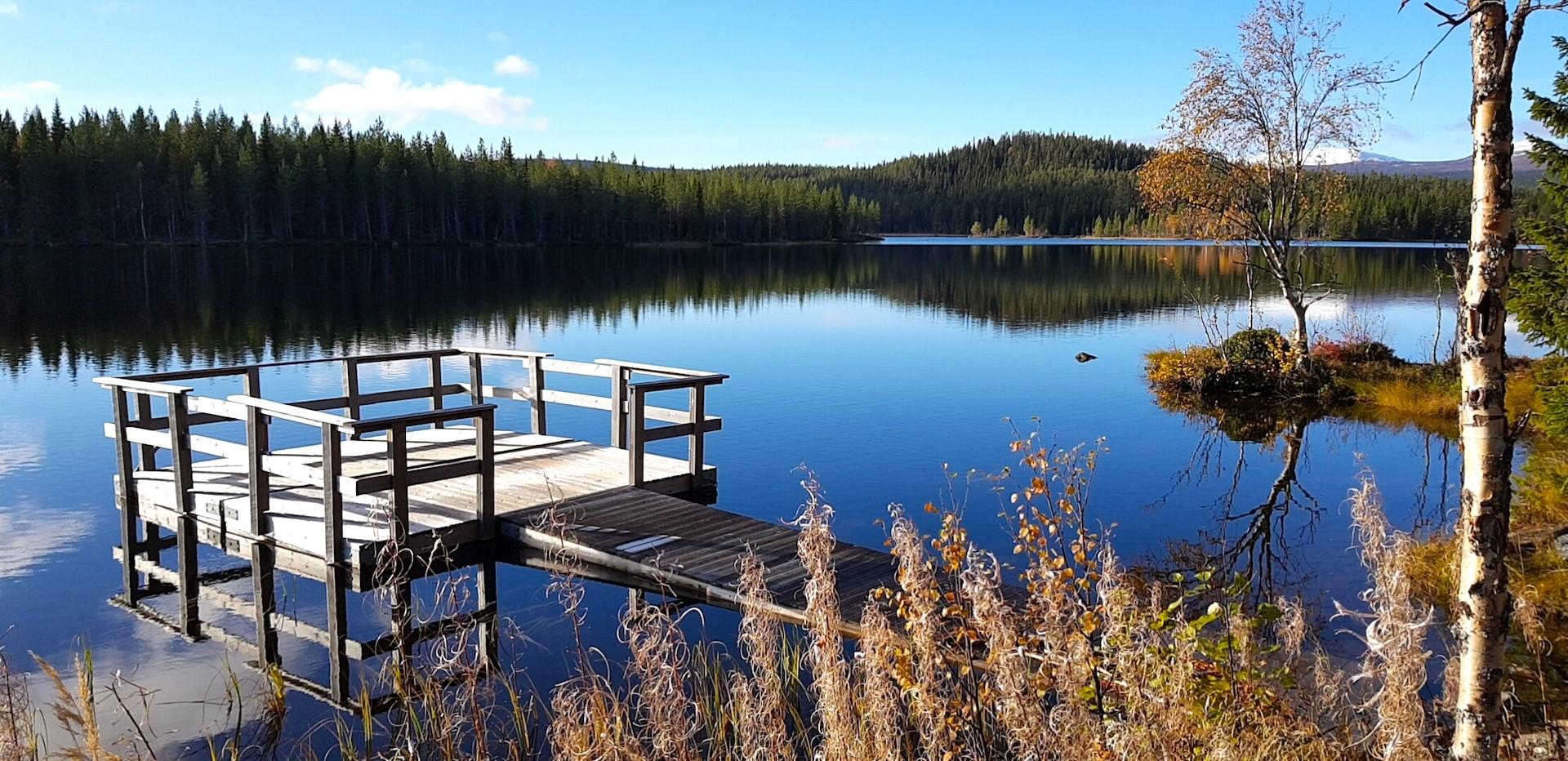 Tillgängligt fiske i Rörvattnet-Skogsjö fvo. Foto Maritha Grelsson