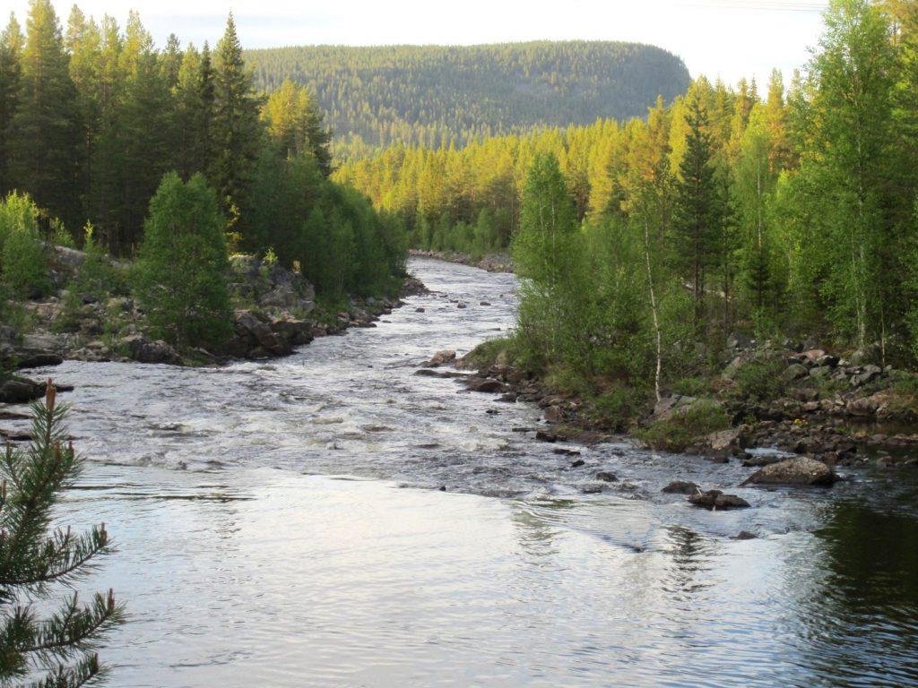 Långåljusnan väster om Långå. Foto Helge Jonsson