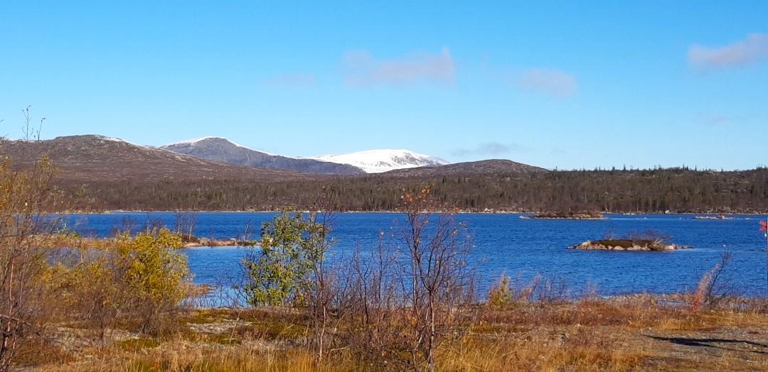 Rörvattnet-Skogsjö fvo. Foto Maritha Grelsson