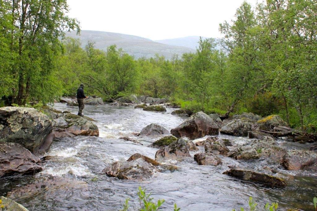 Härligt fiske hos Strapatser i Funäsdalen. Foto Jon Wagenius