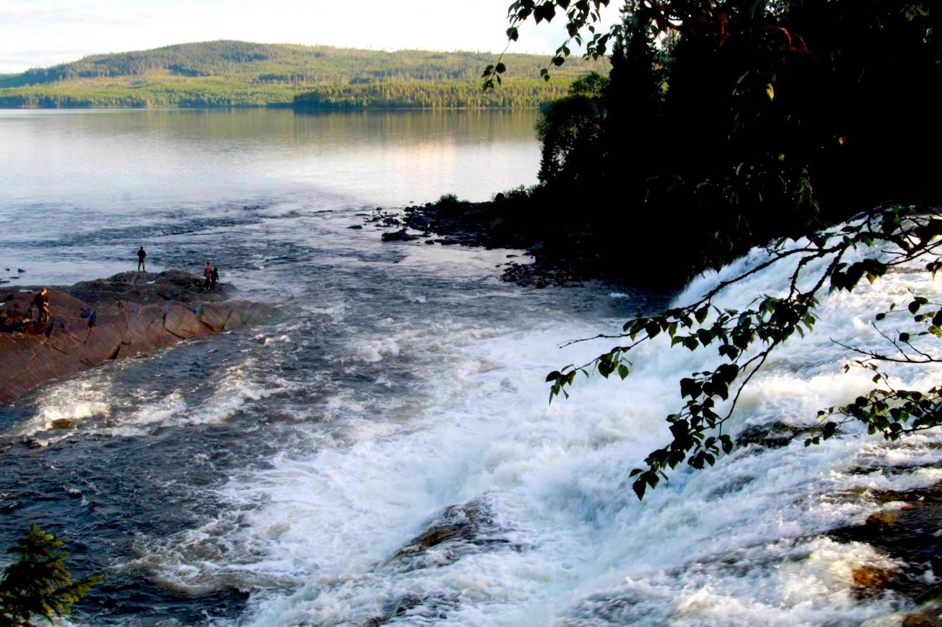 Vid foten av Rengsfallet inom Valsjöns fvo. Foto Anki Hallqvist