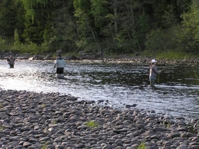 Flugfiskekurs. Foto Ammeråns Fiskecamp