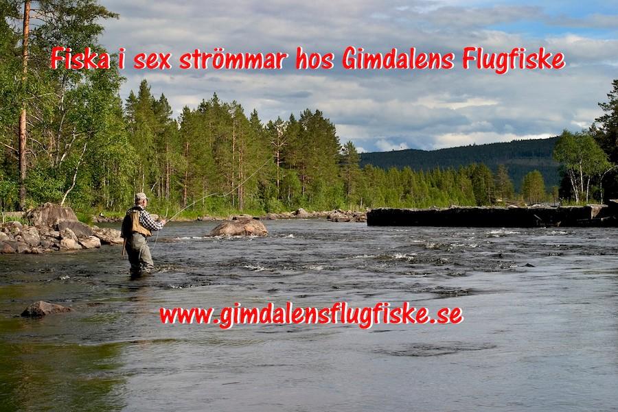 Foto Gimdalens fvo