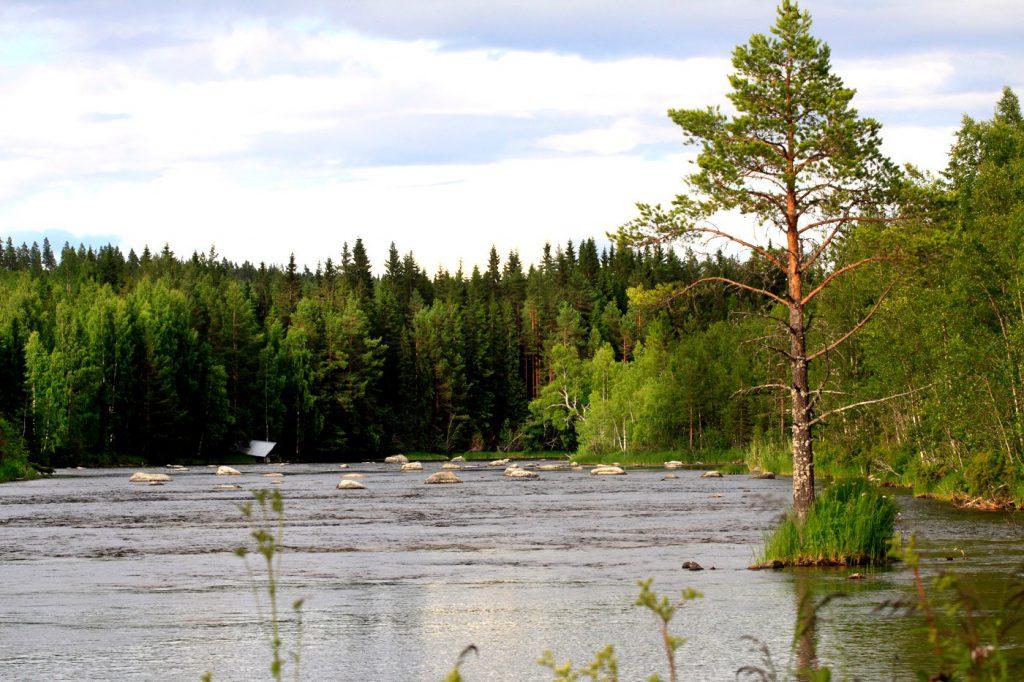 Foto Idsjöströmmens Flugfiske