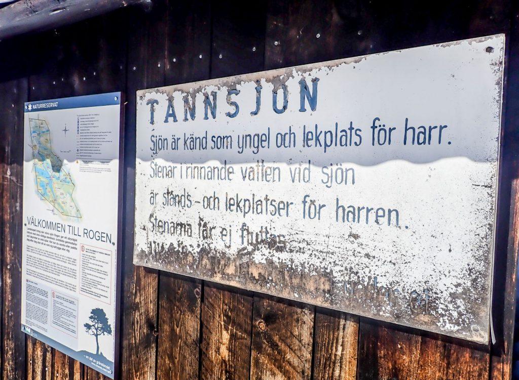 Information i Tännäs. Foto Anders Lundin