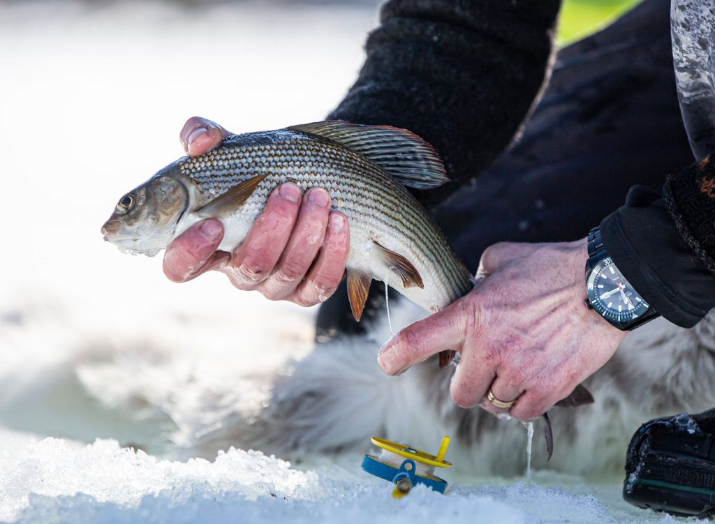 Fiskelycka i Tännäs. Foto Anders Lundin